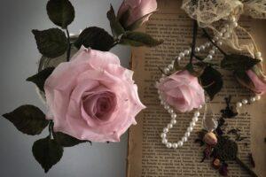 on line rosas